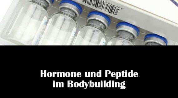 Hormone und Peptide im Bodybuilding