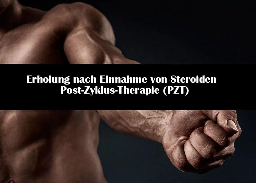 Erholung nach Einnahme von Steroiden | Post-Zyklus-Therapie (PZT)